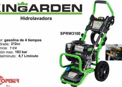 SRPW3100
