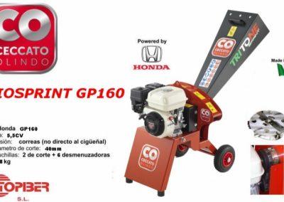 BIOSPRINT GP160